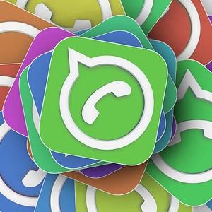 whatsapp sopravvivenza gruppi